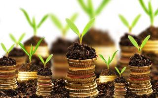 Как правильно вложить деньги в ценные бумаги